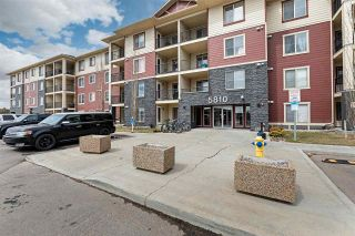Photo 4: 306 5810 MULLEN Place in Edmonton: Zone 14 Condo for sale : MLS®# E4241982