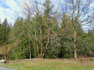 Photo 2: 25389 98 Avenue in Maple Ridge: Thornhill MR Land for sale : MLS®# R2537550