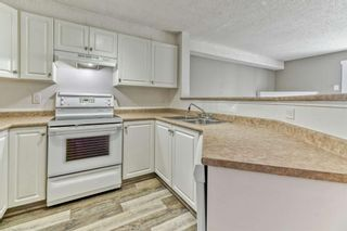 Photo 6: 337 1717 60 Street SE in Calgary: Red Carpet Apartment for sale : MLS®# A1067174