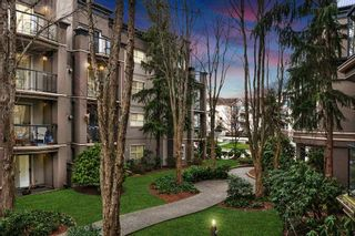"""Photo 15: 210A 2615 JANE Street in Port Coquitlam: Central Pt Coquitlam Condo for sale in """"BURLEIGH GREEN"""" : MLS®# R2340367"""
