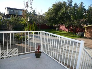 Photo 11: 484 Foster St in Victoria: Residential for sale : MLS®# 285068