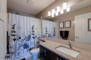 Photo 13: 203 Evanston Manor NW in Calgary: Evanston Row/Townhouse for sale : MLS®# A1149522