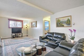Photo 11: 110 11 DOVER Point SE in Calgary: Dover Apartment for sale : MLS®# A1118273