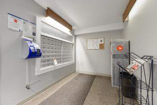 Photo 30: 102 3611 145 Avenue in Edmonton: Zone 35 Condo for sale : MLS®# E4245282