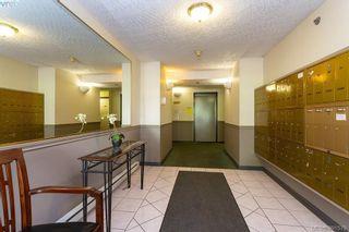 Photo 19: 205 545 Manchester Rd in VICTORIA: Vi Burnside Condo for sale (Victoria)  : MLS®# 787082
