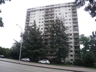 """Main Photo: 407 320 ROYAL Avenue in New Westminster: Downtown NW Condo for sale in """"PEPPERTREE"""" : MLS®# R2622663"""
