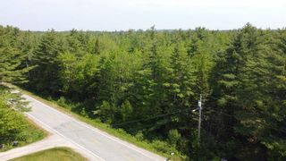 Photo 5: Lot Highway 203 in Shelburne: 407-Shelburne County Vacant Land for sale (South Shore)  : MLS®# 202114248