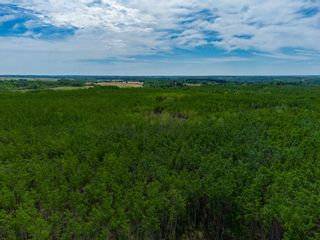 Photo 2: TWP 624 Rge Rd 423: Rural Bonnyville M.D. Rural Land/Vacant Lot for sale : MLS®# E4227702
