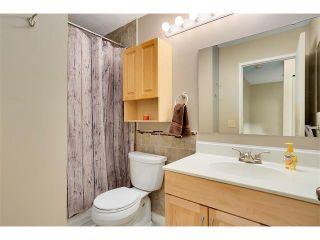 Photo 17: 1399 BERKLEY Drive NW in Calgary: Beddington Heights House for sale