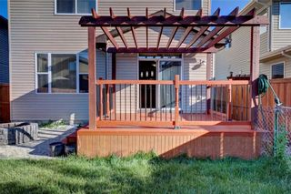 Photo 32: 279 CHAPALINA Terrace SE in Calgary: Chaparral House for sale : MLS®# C4128553