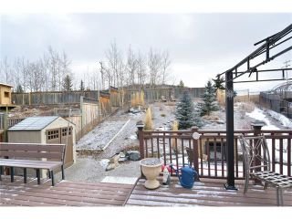 Photo 41: 120 SUNTERRA Heights: Cochrane House for sale : MLS®# C4103132