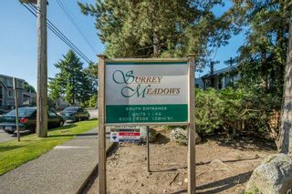Photo 20: 29 9358 128 STREET in Surrey: Queen Mary Park Surrey Townhouse for sale : MLS®# R2475647