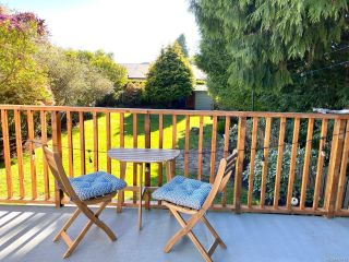 Photo 18: 420 Richmond Ave in : Vi Fairfield East House for sale (Victoria)  : MLS®# 874416