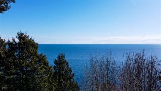 Photo 39: 1055 & 1057 GOWER POINT Road in Gibsons: Gibsons & Area House for sale (Sunshine Coast)  : MLS®# R2552576