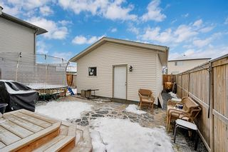 Photo 29: 226 Reunion Court NW: Airdrie Detached for sale : MLS®# A1063568