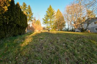 Photo 8: 4659 McQuillan Rd in : CV Courtenay East Land for sale (Comox Valley)  : MLS®# 863260