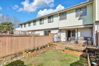 """Photo 23: 24 5351 200 Street in Langley: Langley City Townhouse for sale in """"BRYDON PARK"""" : MLS®# R2554795"""