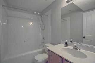 Photo 29: 124 Bow Ridge Court: Cochrane Detached for sale : MLS®# A1141194