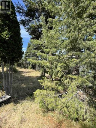 Photo 16: 1803 SOUTH LAKESIDE DRIVE in Williams Lake: Vacant Land for sale : MLS®# R2612495