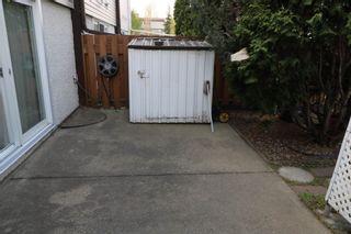 Photo 31: F 16413 89 Avenue in Edmonton: Zone 22 Townhouse for sale : MLS®# E4245439