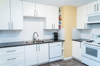 Photo 8: 8755 64 Avenue in Edmonton: Zone 17 House for sale : MLS®# E4263854