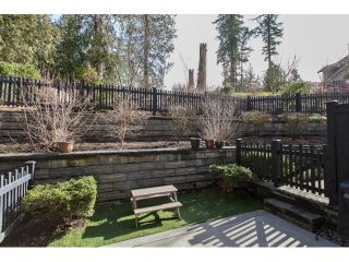 """Photo 16: 20 21867 50 Avenue in Langley: Murrayville Townhouse for sale in """"WINCHESTER"""" : MLS®# R2039227"""