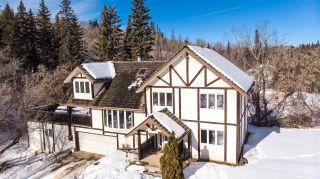 Photo 23: 9644 88 Avenue in Edmonton: Zone 15 House for sale : MLS®# E4187777