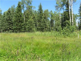 Photo 20: 2 miles west of Dartique Hall in COCHRANE: Rural Rocky View MD Rural Land for sale : MLS®# C3545361