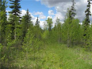 Photo 7: 265139 Jamieson Road: Rural Bighorn M.D. Residential Detached Single Family for sale : MLS®# C3620843
