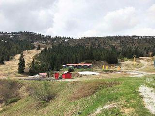 "Photo 19: 20716 SAKWI CREEK Road in Mission: Hemlock Land for sale in ""Hemlock Valley Ski Resort"" : MLS®# R2176457"