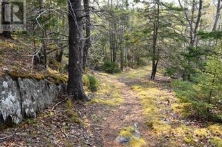 Photo 17: Old Kettle Road in Port Medway: Vacant Land for sale : MLS®# 202113253