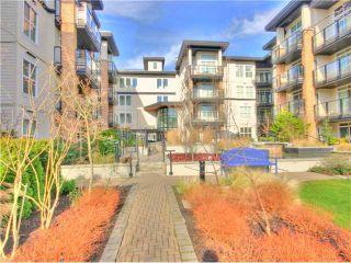 Photo 10: 119 5928 BIRNEY Avenue in Vancouver: University VW Condo for sale (Vancouver West)  : MLS®# V1056407