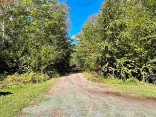 Photo 20: 1078 Black River Road in Black River Lake: 404-Kings County Residential for sale (Annapolis Valley)  : MLS®# 202124768