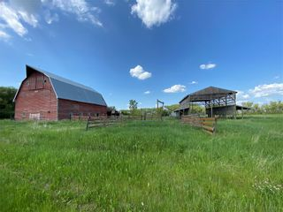 Photo 5:  in Killarney: Agriculture for sale : MLS®# 202116569