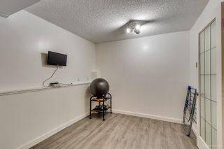 Photo 30: 3320 EDINBURGH Street in Port Coquitlam: Glenwood PQ 1/2 Duplex for sale : MLS®# R2317364