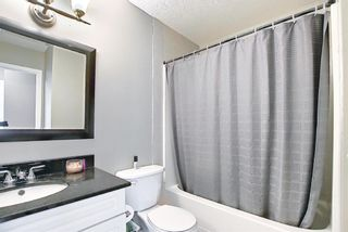 Photo 17: 12039 Candiac Road SW in Calgary: Canyon Meadows Detached for sale : MLS®# A1096218