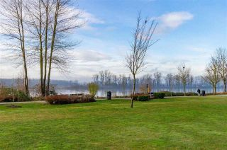 """Photo 22: 59 11067 BARNSTON VIEW Road in Pitt Meadows: South Meadows Townhouse for sale in """"COHO - OSPREY VILLAGE"""" : MLS®# R2545734"""