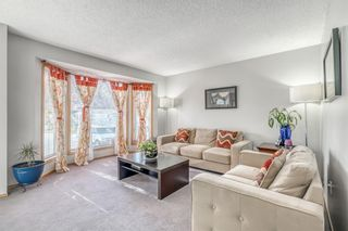 Main Photo: 342 Erin Circle SE in Calgary: Erin Woods Detached for sale : MLS®# A1151553
