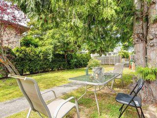 Photo 20: 3195 Balfour Ave in : Vi Burnside House for sale (Victoria)  : MLS®# 883004