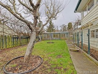 Photo 19: 3478 Lovat Ave in VICTORIA: SE Quadra House for sale (Saanich East)  : MLS®# 752642