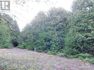 Photo 2: ROCKSPRINGS ROAD in North Augusta: Vacant Land for sale : MLS®# 1262472