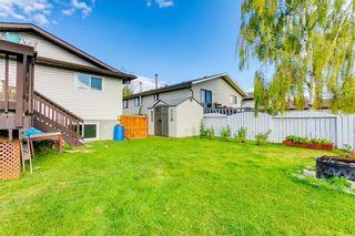 Photo 32: 103 WHITERAM Close NE in Calgary: Whitehorn Detached for sale : MLS®# C4268249