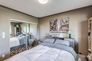 Photo 13: 301 104 24 Avenue SW in Calgary: Mission Apartment for sale : MLS®# A1107682