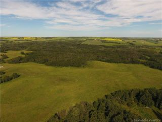 Photo 33: 41405 Range Road 231: Rural Lacombe County Detached for sale : MLS®# CA0173239