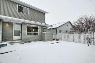 Photo 43: 14 Everglade Drive SE: Airdrie Semi Detached for sale : MLS®# A1067216