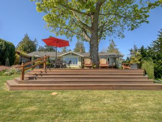 Photo 45: 6749 Welch Rd in : CS Martindale House for sale (Central Saanich)  : MLS®# 875502