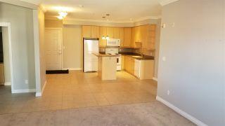Photo 11: 313 10116 80 Avenue in Edmonton: Zone 17 Condo for sale : MLS®# E4229427