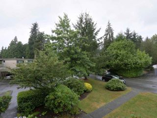 Photo 16: 1259 PLATEAU DRIVE in North Vancouver: Pemberton Heights Condo for sale : MLS®# R2495881