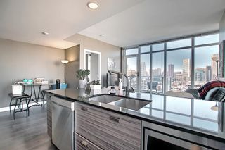 Photo 17: 1607 1500 7 Street SW in Calgary: Beltline Apartment for sale : MLS®# A1100003