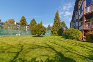 Photo 29: 312 69 Gorge Rd in : SW West Saanich Condo for sale (Saanich West)  : MLS®# 884333